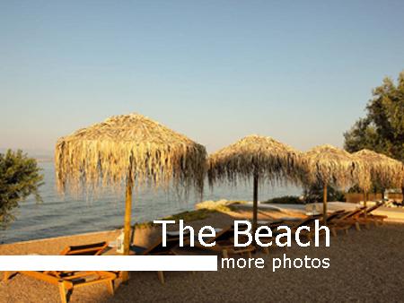 the-beach-more